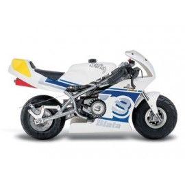 Blata Mini Bike 2.6CV