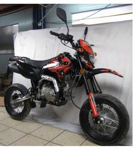 PIT BIKE MATRICULABLE MONSTER PRO SP125